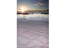 Pink_Beach_IMG_2606_blended1_copy.jpg
